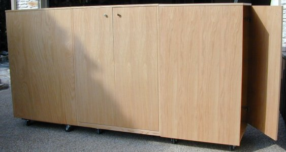 3251 This Large Art Storage Cabinet